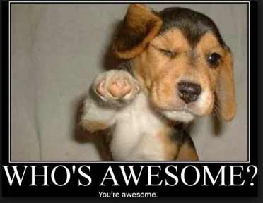 who-is-awesome
